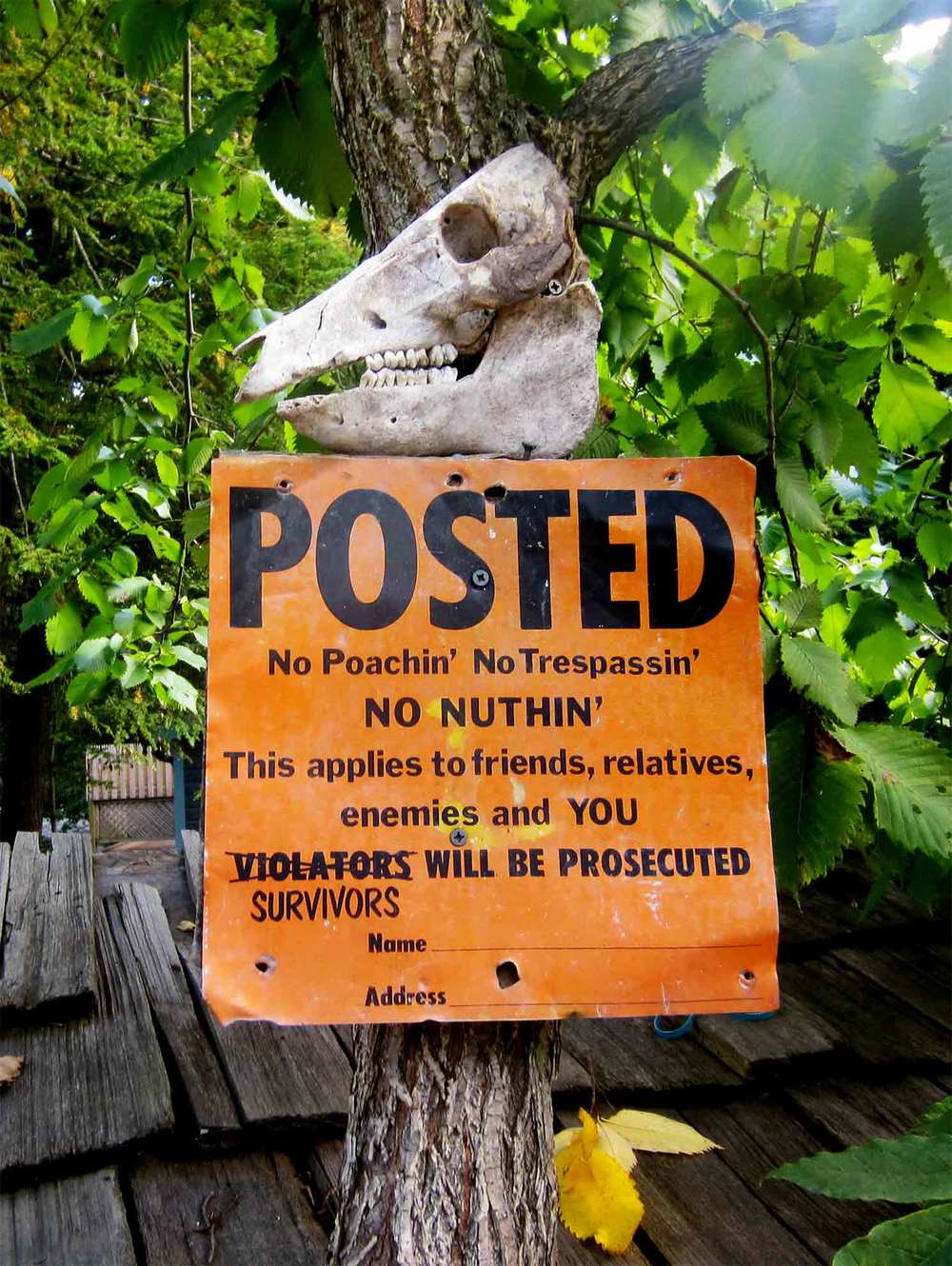 no-hunting-sign-posted.jpg