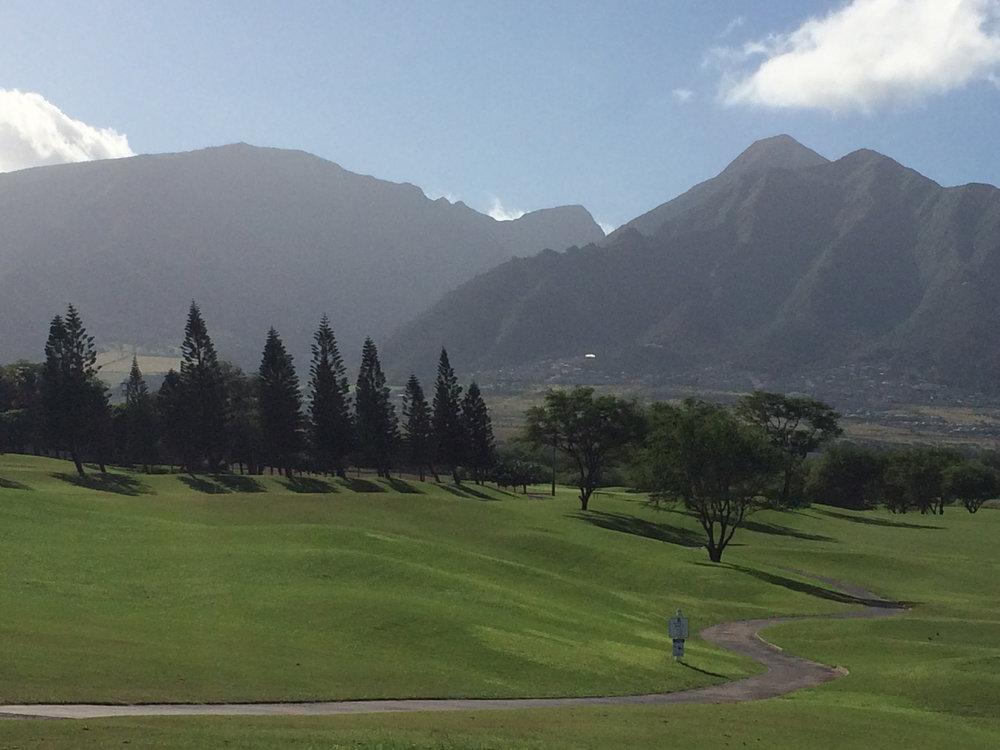 Maui2016 golf C.R.jpg