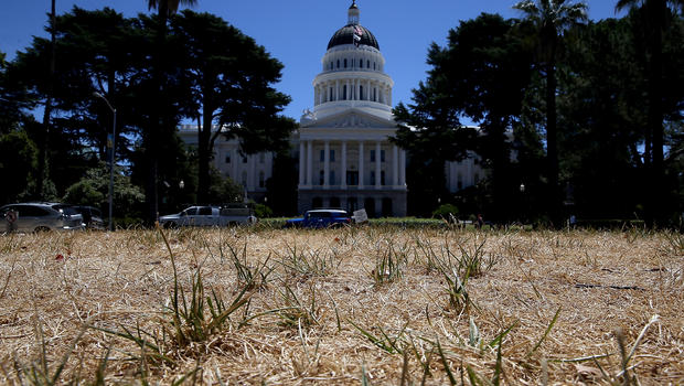 Dead lawn in front of the California State Capital Building in Sacramento.