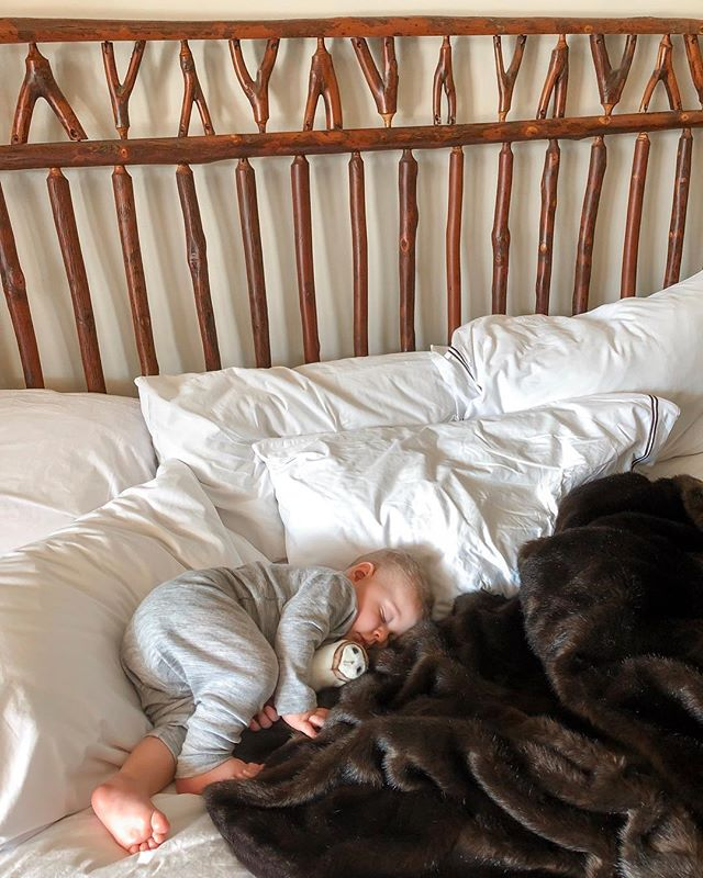 The slumbering bear cub in his ADK digs.🐻