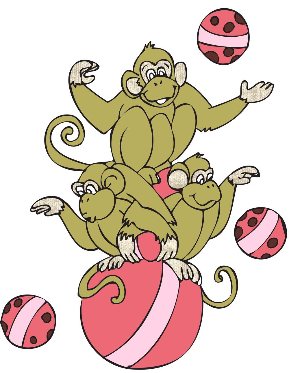 Monkey | Ball