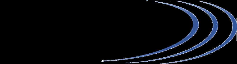 ValueSense Clear Logo.png