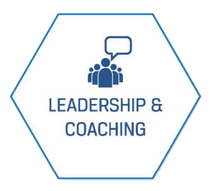 leadership and coaching hex clean.png