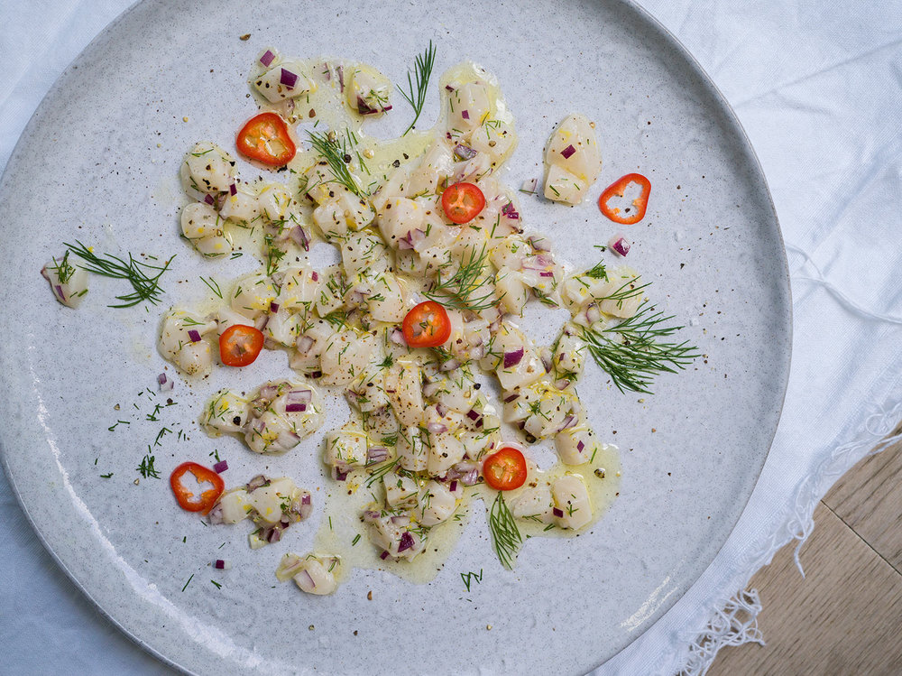 scallop ceviche, with red chillies & dill