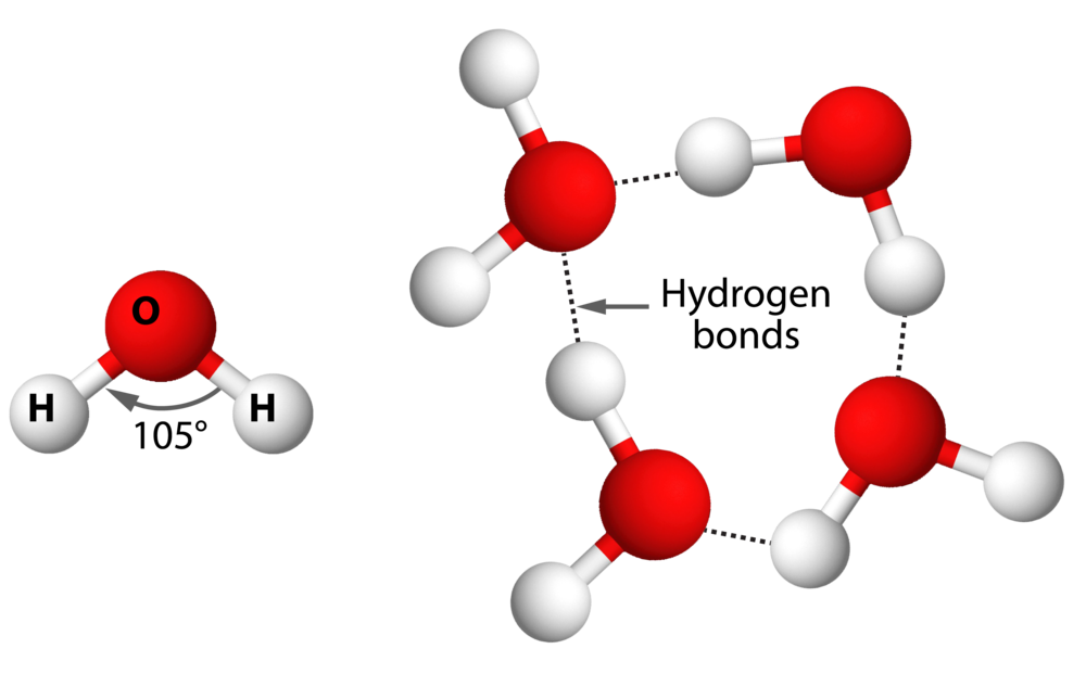 Figure 1.9.png