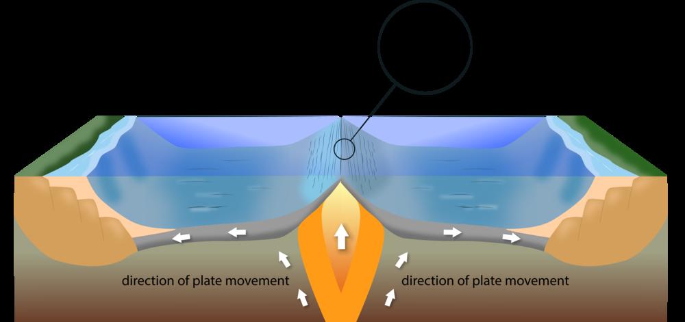 Figure 1.4.png