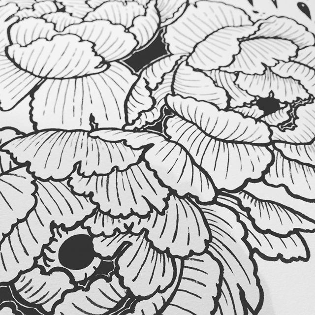Paeonia peek a boo #flowers #ink #drawing