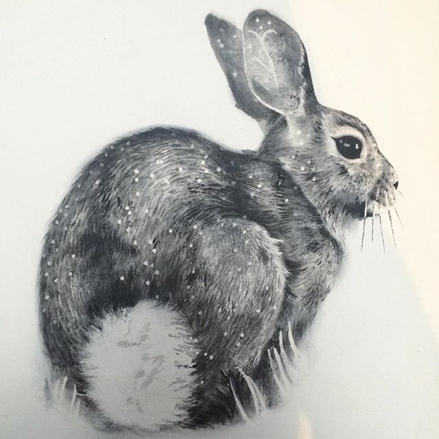 Cottontail rabbit study will make for a nice Christmas present from this poor artist. Sorry family! It's all art for you. #painting #inkdrawing #graphitedrawing #rabbit