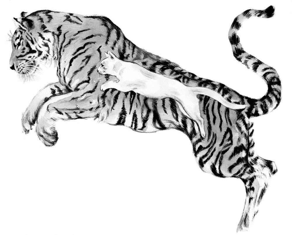 TigerCatWEB.jpg
