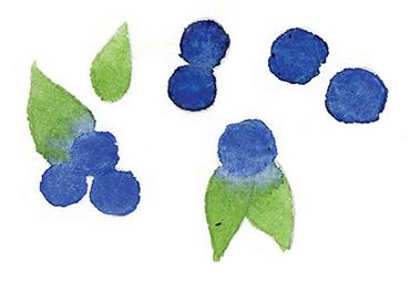 Blueberry_spot.jpg