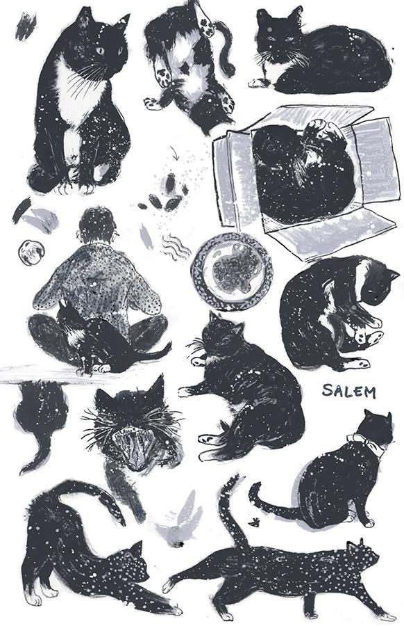 SalemPage.jpg
