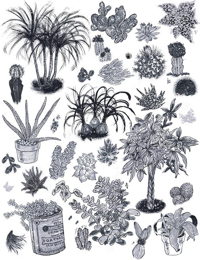 PlantsPoster.jpg