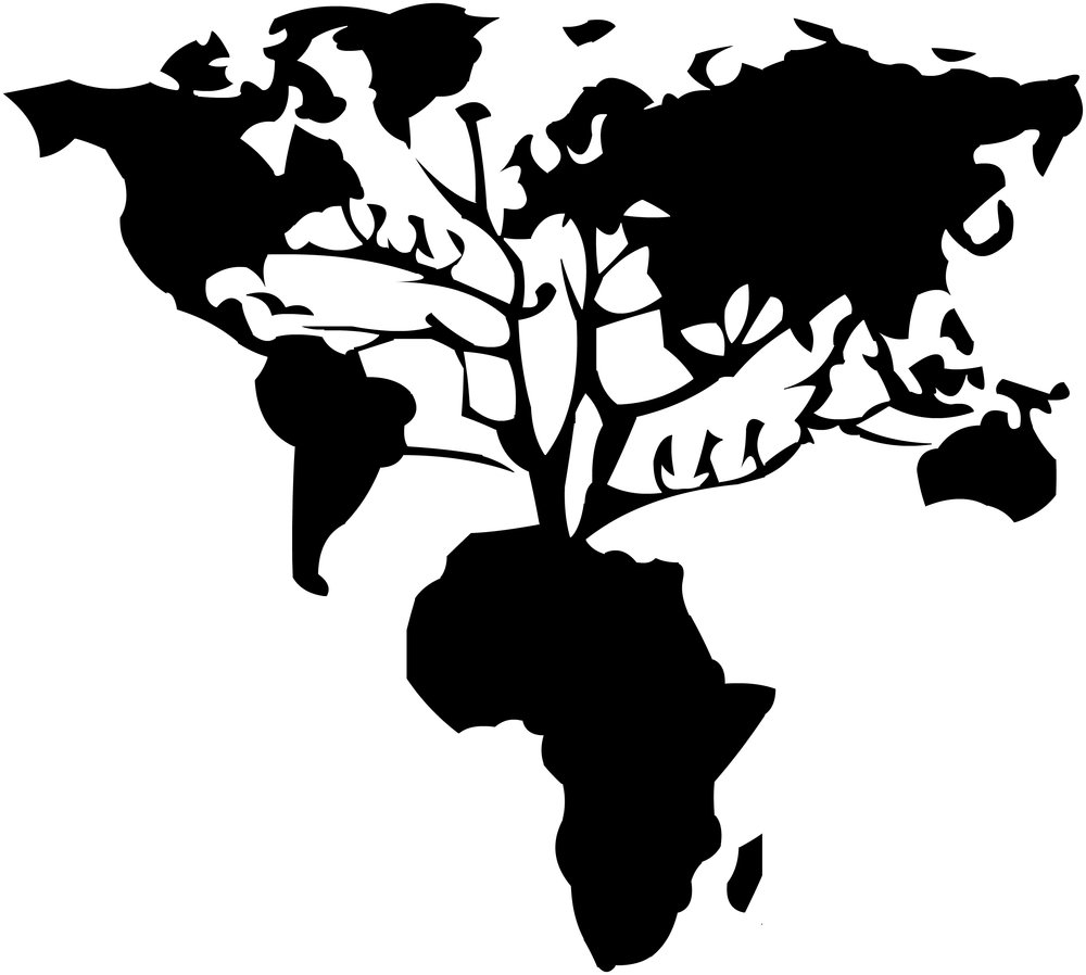 africa.roots.world.yt2.jpg