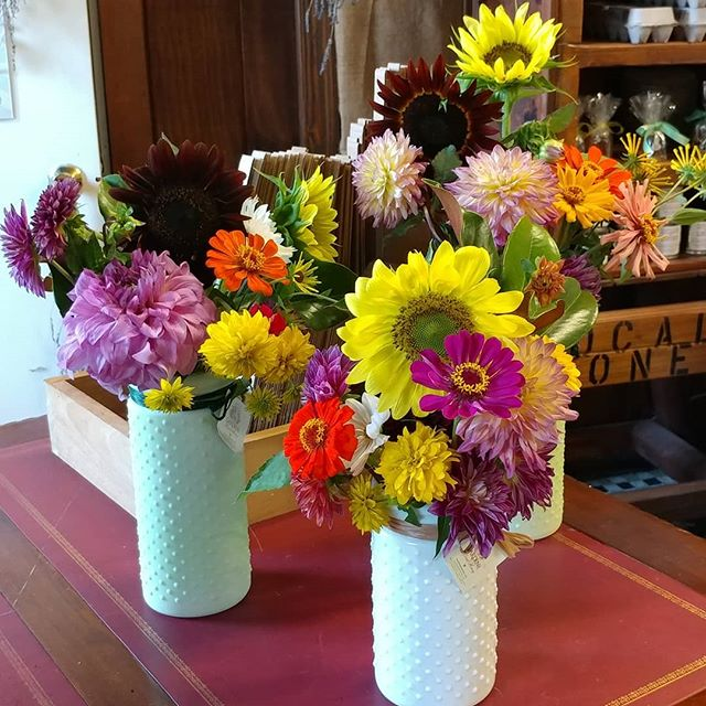 We have fresh cut flowers available today. Single stems or a pre-made arrangement in a vase.  Stop by to say hi! #localhoney #local #localfood #shoplocal #shopsmall #nj #newjersey #rawhoney #njliving #giftideas #fromthegarden #garden #ftg #freehold #monmouthcounty #honey #honeyshop #supportnjlocal #flowers #freshflowers