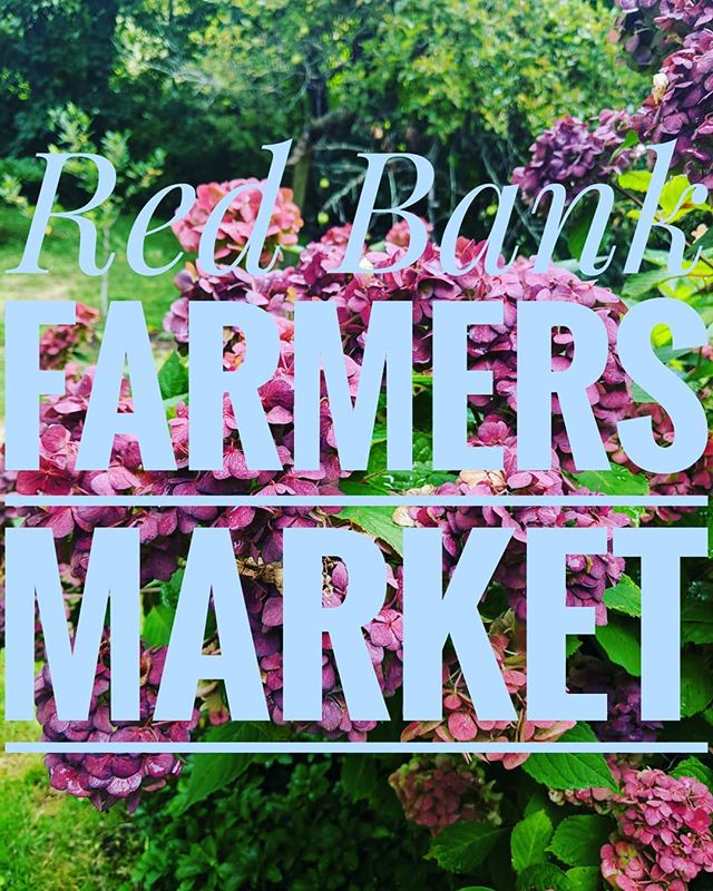 Unfortunately due to a scheduling conflict we will not be available to be at the Red Bank Farmers market. We will be back soon and we hope you can come to us for all your weekly honey needs!