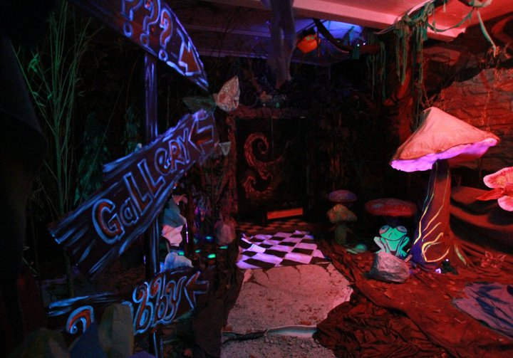 The mysterious the forest pathway leads you to the reception hall as you enter the world of Alice in Wonderland.