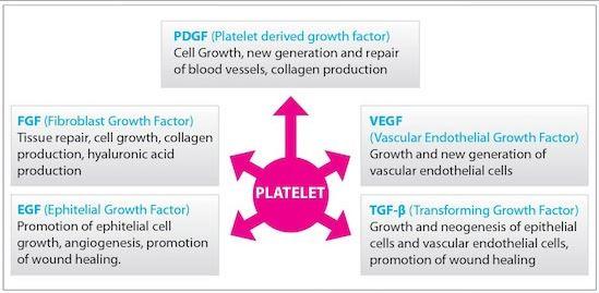 PRP - platelet rich plasma process