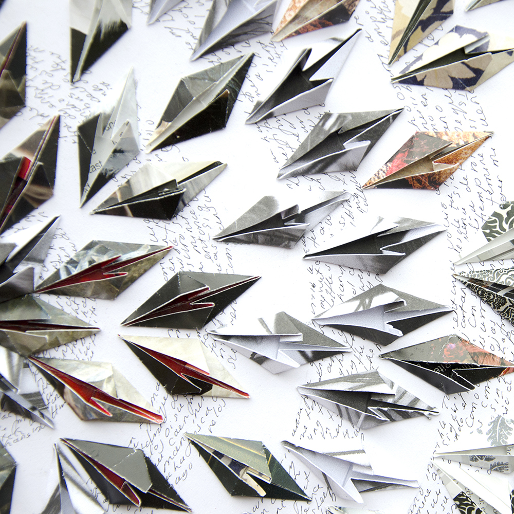 pequeñas pluma negras - Detail