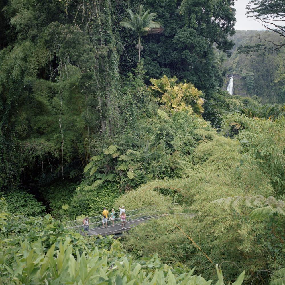'Akaka Falls, Hawai'i