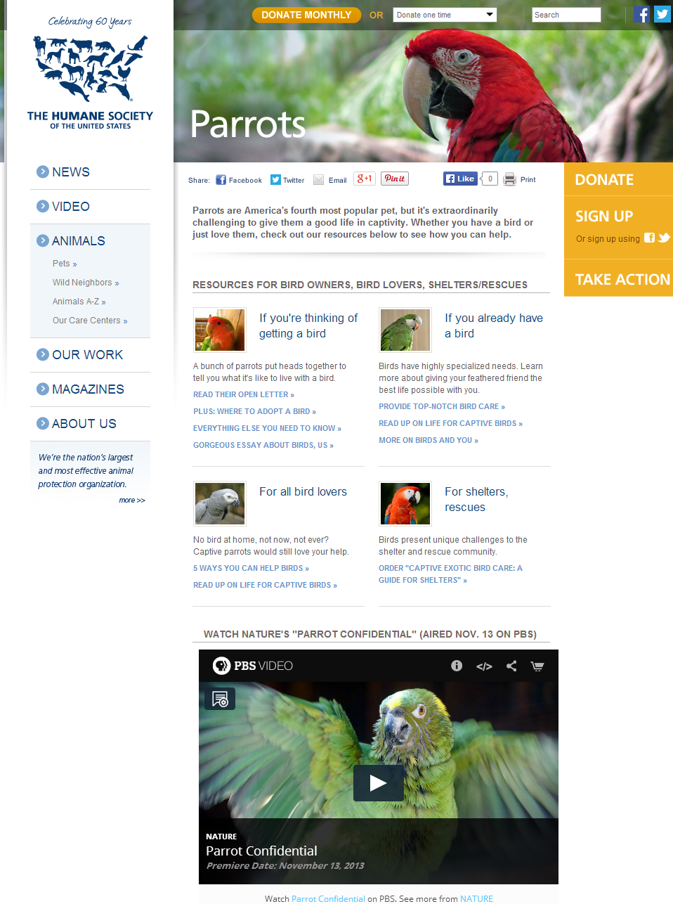 parrot resource page full.png