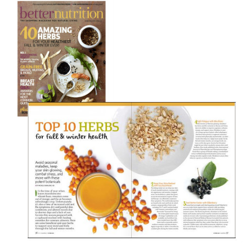 Top 10 Herbs for Fall and Winter by Dr. Michele Burklund and Better Nutrition