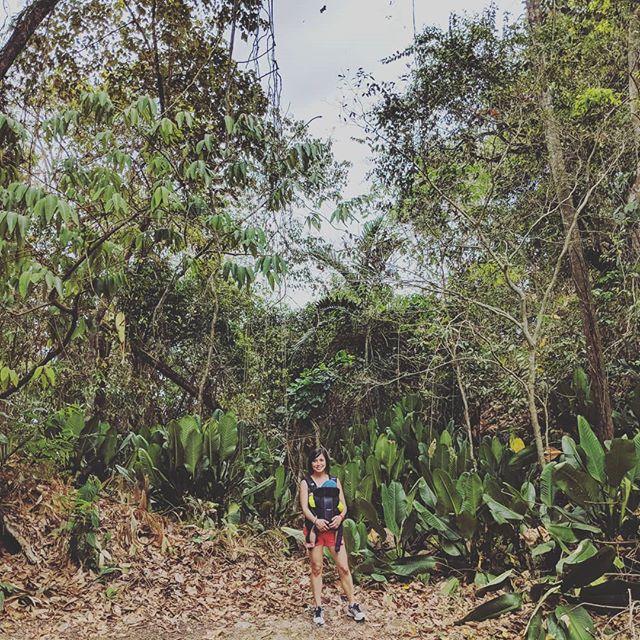 Jungle babes #levigoestopanama