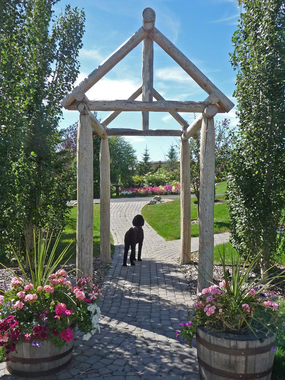 rustic wood arbor structure and garden path