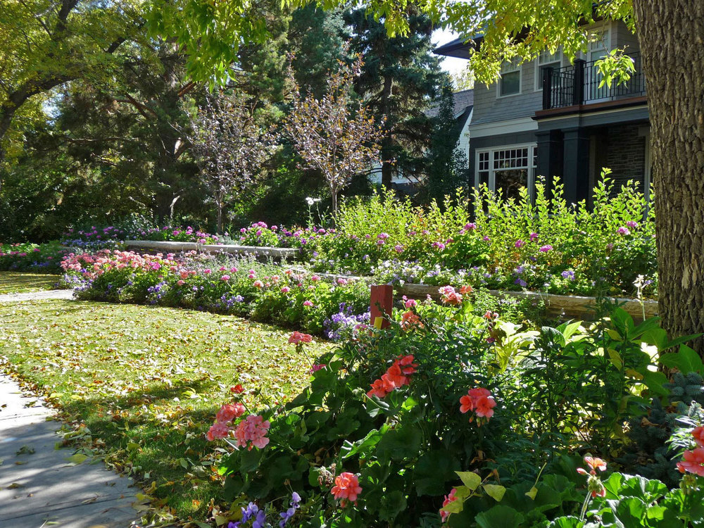 mt.-royal-residence_front-lawn-&-planting.jpg