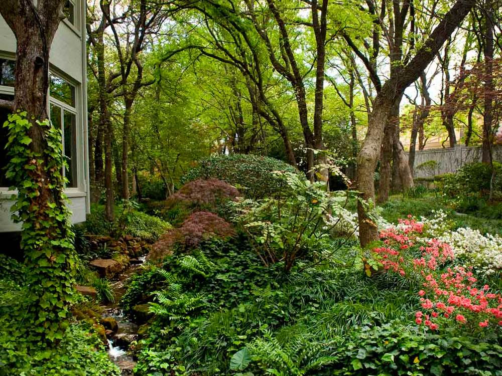 natural landscape design in wooded setting