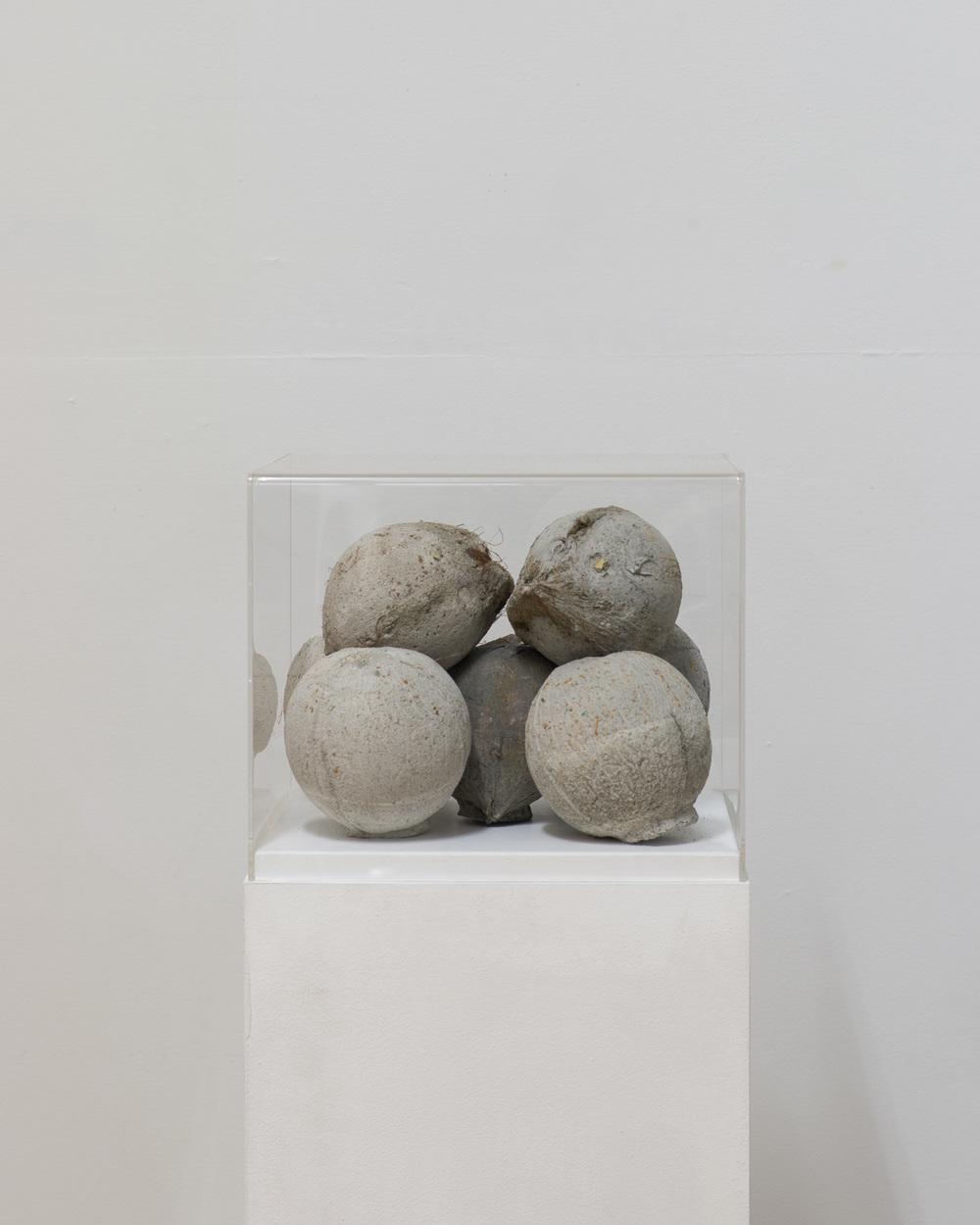 Pooja Niu    2015    Concrete, coconut husk    approx. 12 x 12 x 12cm     Enquire