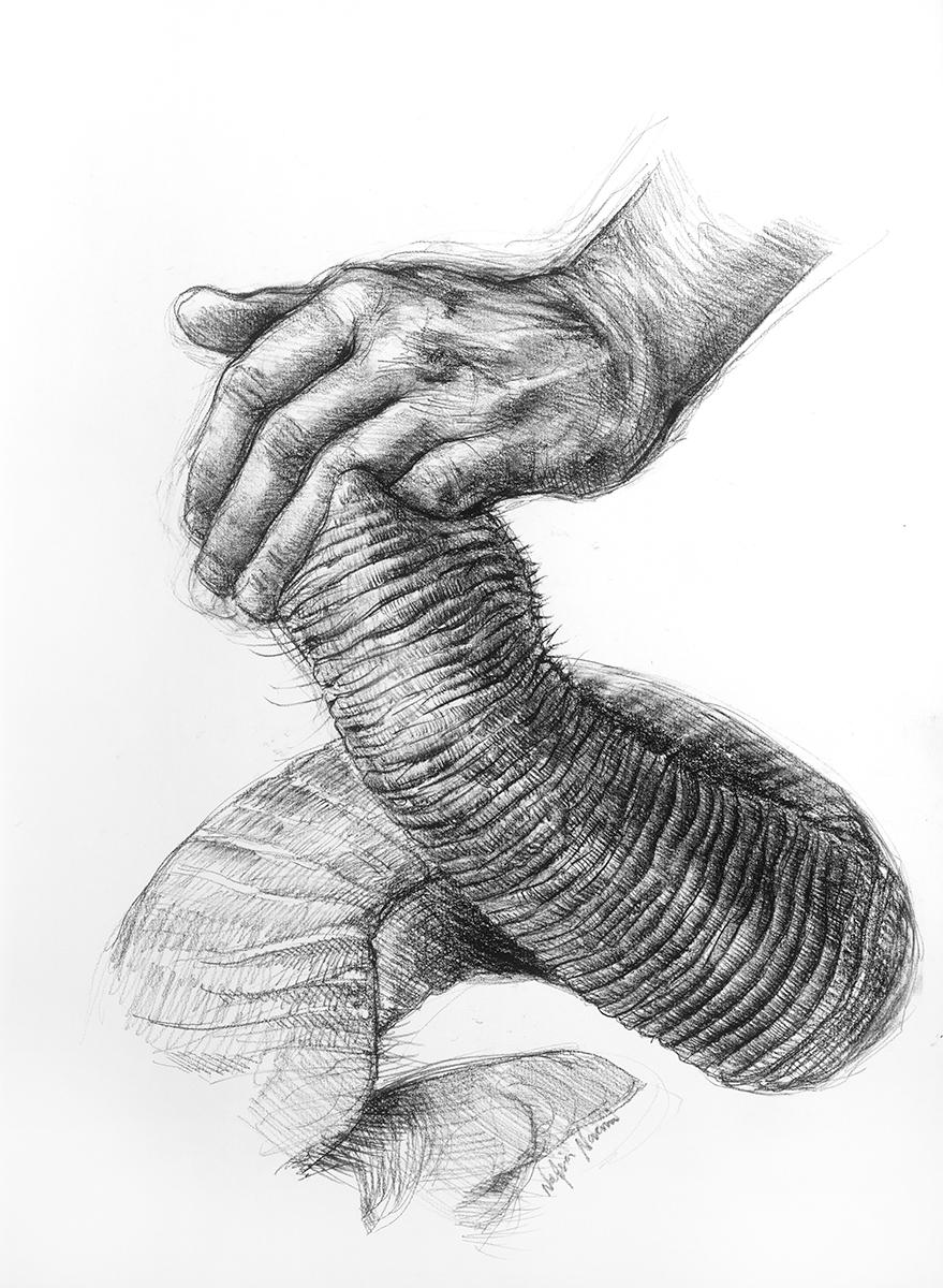 nafissa-elephant-25.jpg