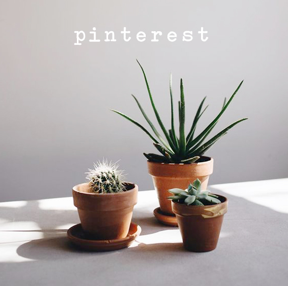 Pinterest_HomeButton_v2.jpg