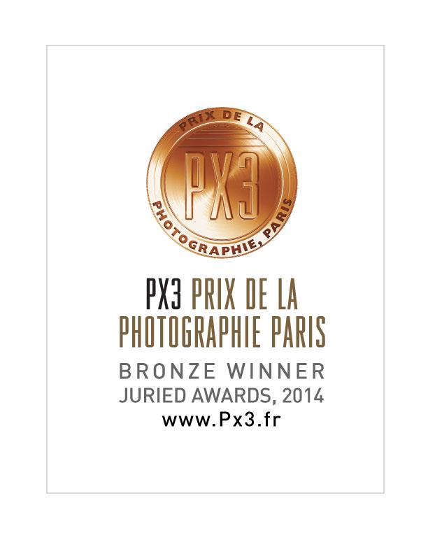 Px3-2014-Bronze.jpg