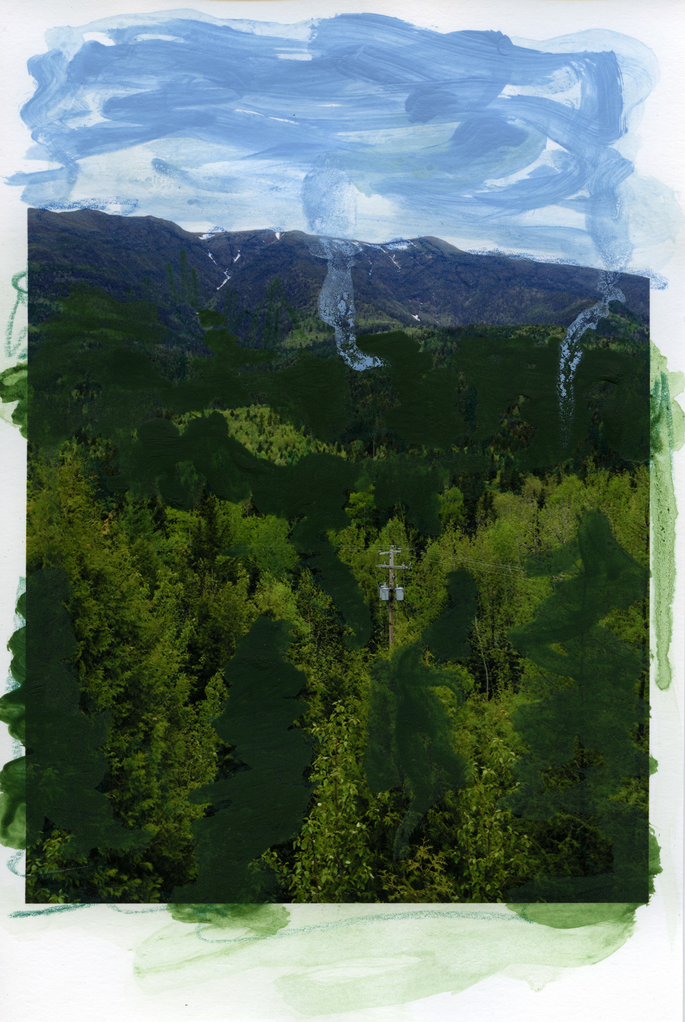 mountain forest001.jpg