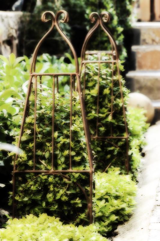 Garden Bleu (46).jpg