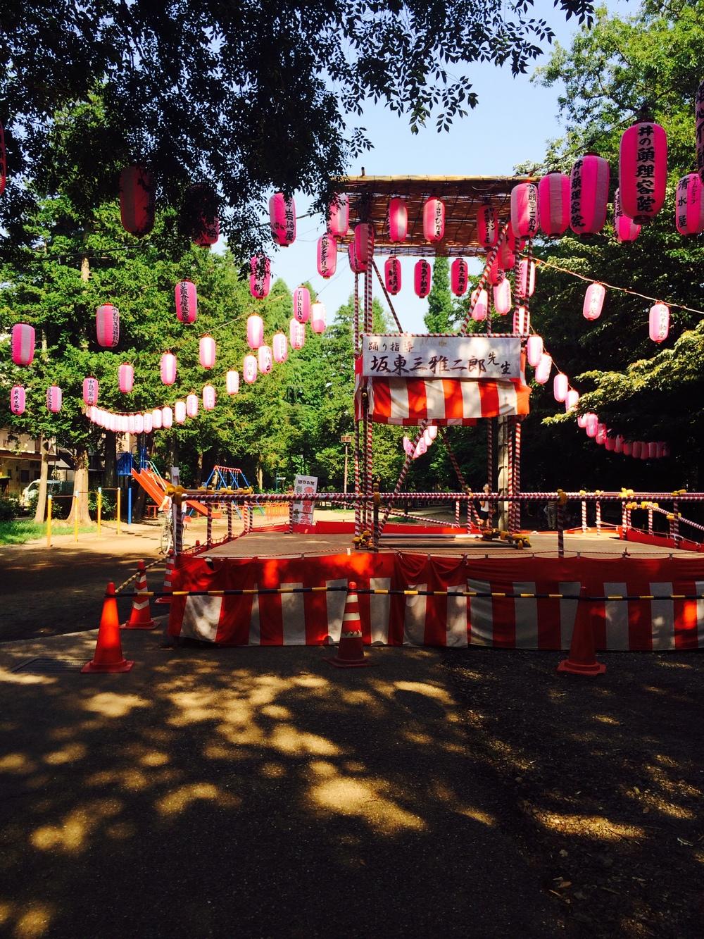 tokyo park pink.jpg
