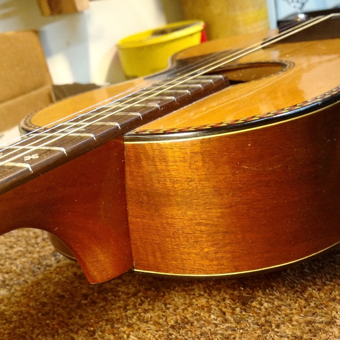 regal tenor guitar restoration