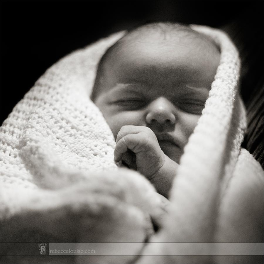 Newborn portrait wrapped in blanket