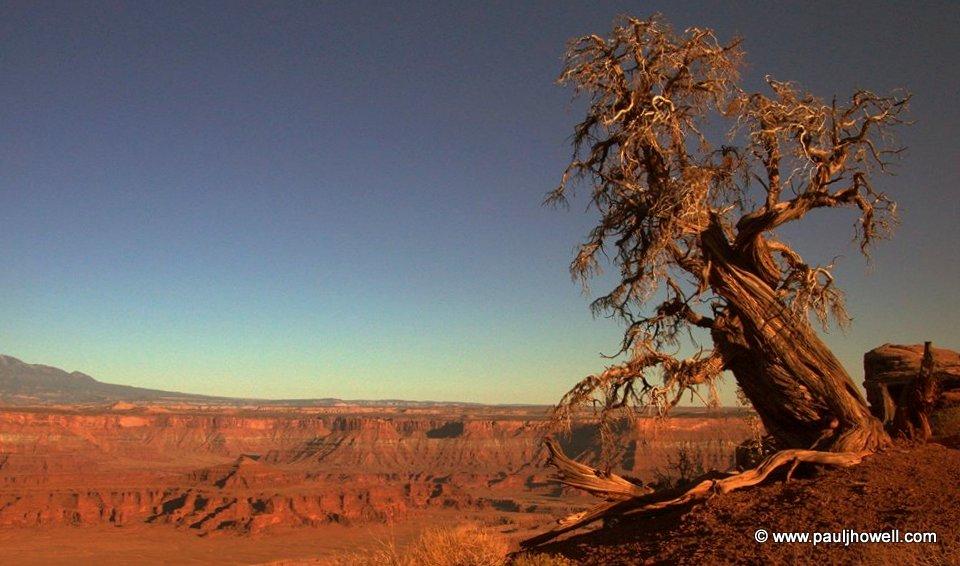 Dead Horse Point - Moab