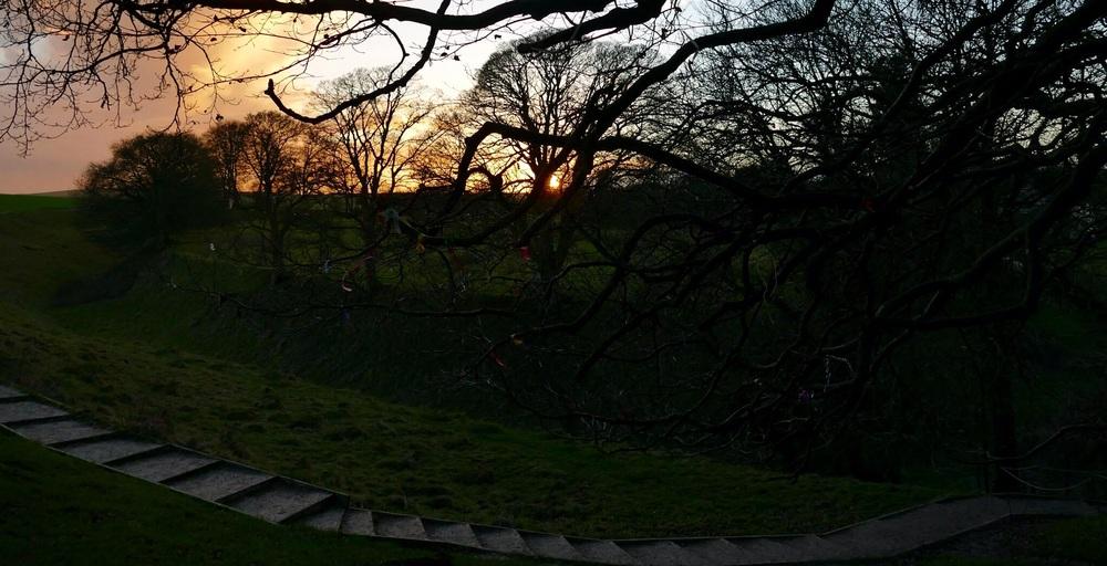 The Blessing Tree - Avebury, Wiltshire. UK.
