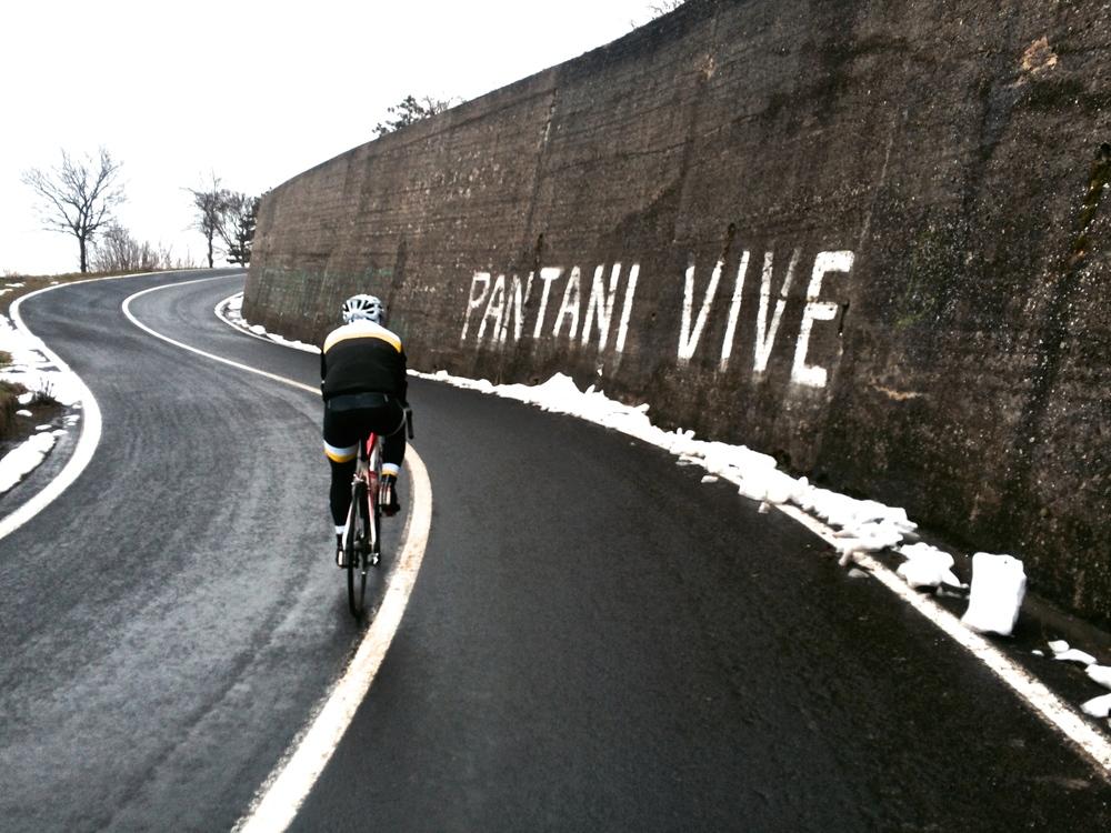 Marco Pantani's homeland