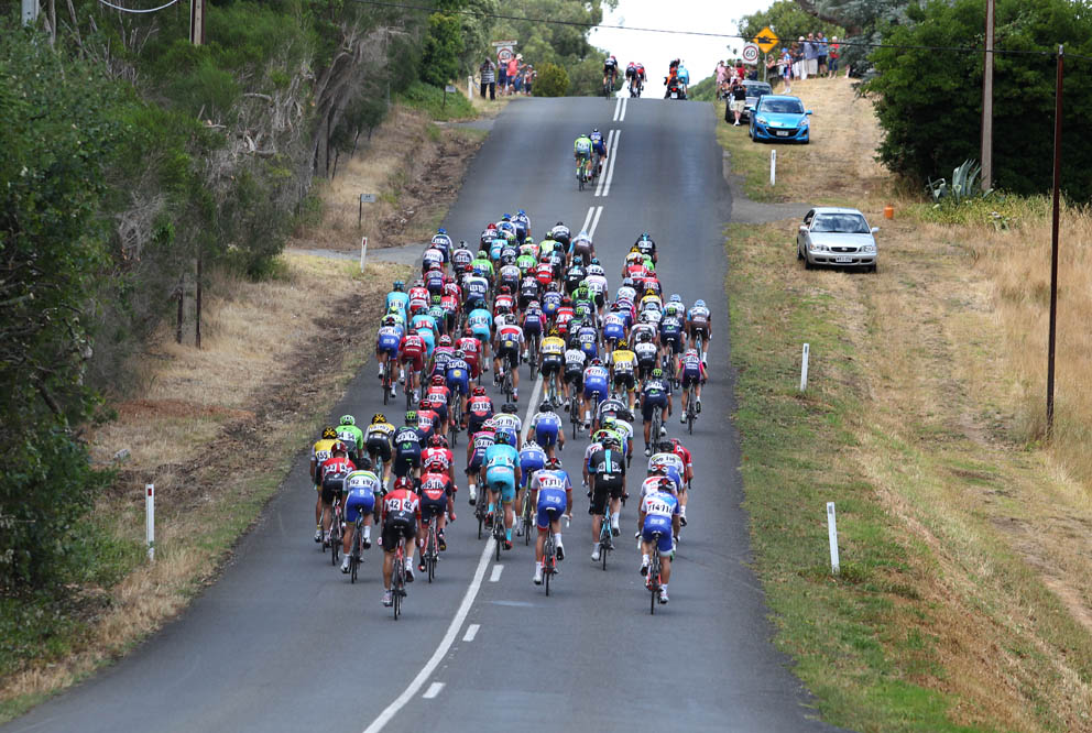 Stage 4 peloton climbing through the Adelaide Hills