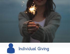 INDIVIDUAL GIVING