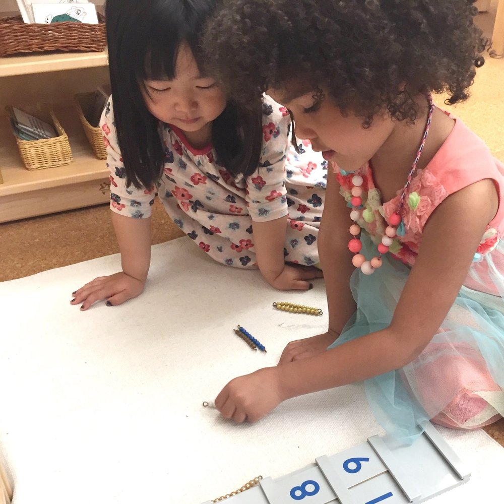 Two Girls Math Montessori.jpg