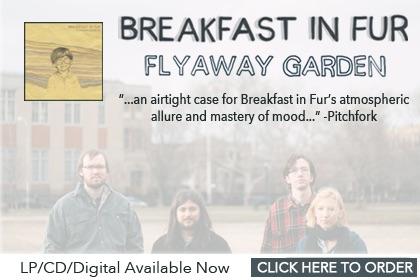 new flyaway garden banner2 copy.jpg