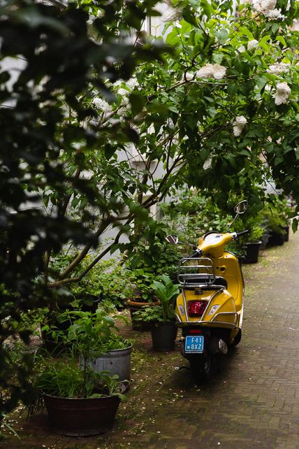 amsterdam-scooter-02.jpg
