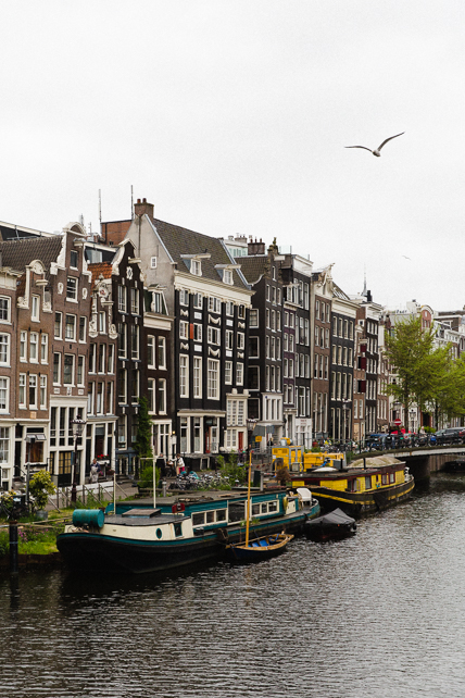 amsterdam-canal-boat-bird.jpg