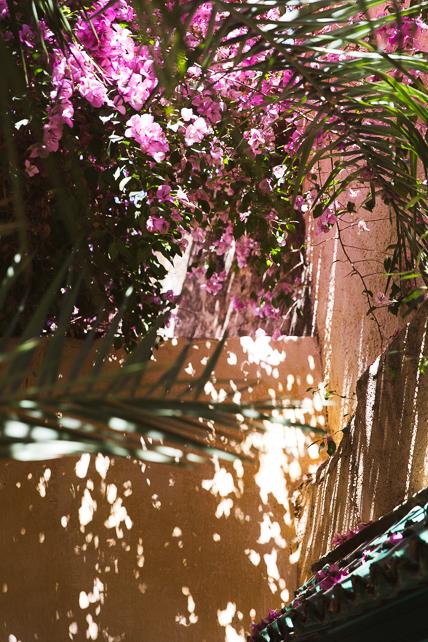 morocco-fez-streets.jpg