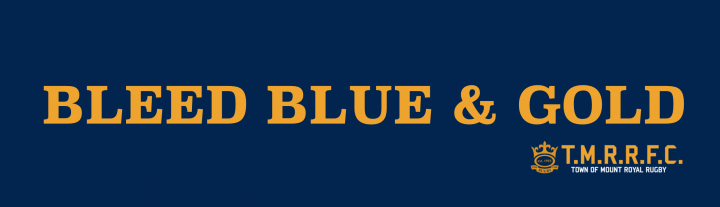 Bleed blue&gold banner(1).png