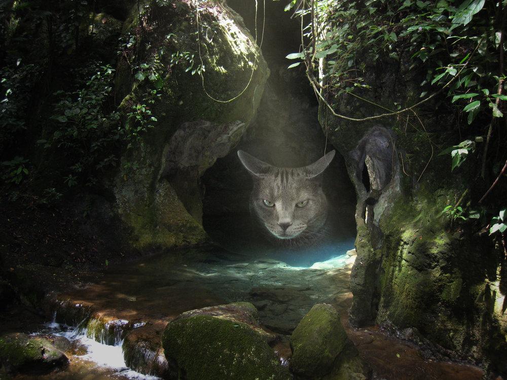 Ruckus_Cave.jpg